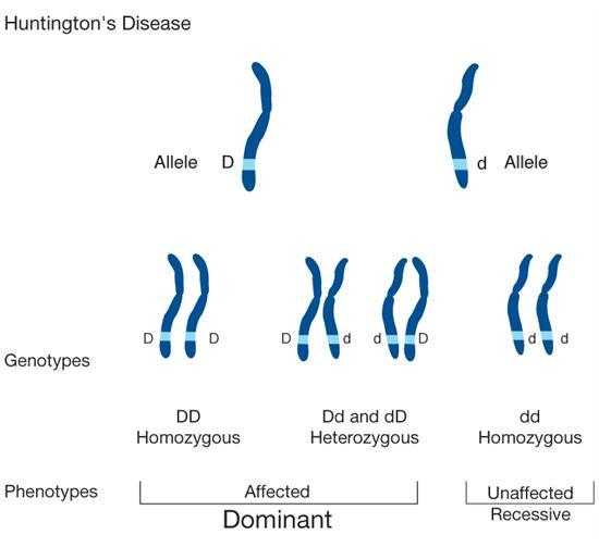 Glossary - Genome BC