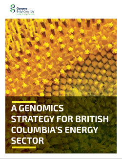 BC sector strategy.PDF