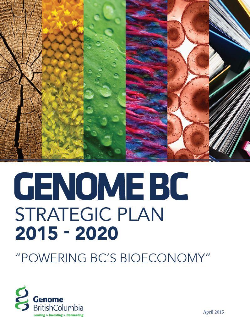 2015-2020 Strategic Plan.PDF
