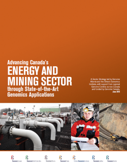 Partnering with the Energy, Mining, and Environment Sectors