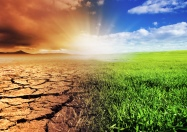 Focus on Climate Change