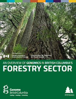BC Sector Overview.PDF