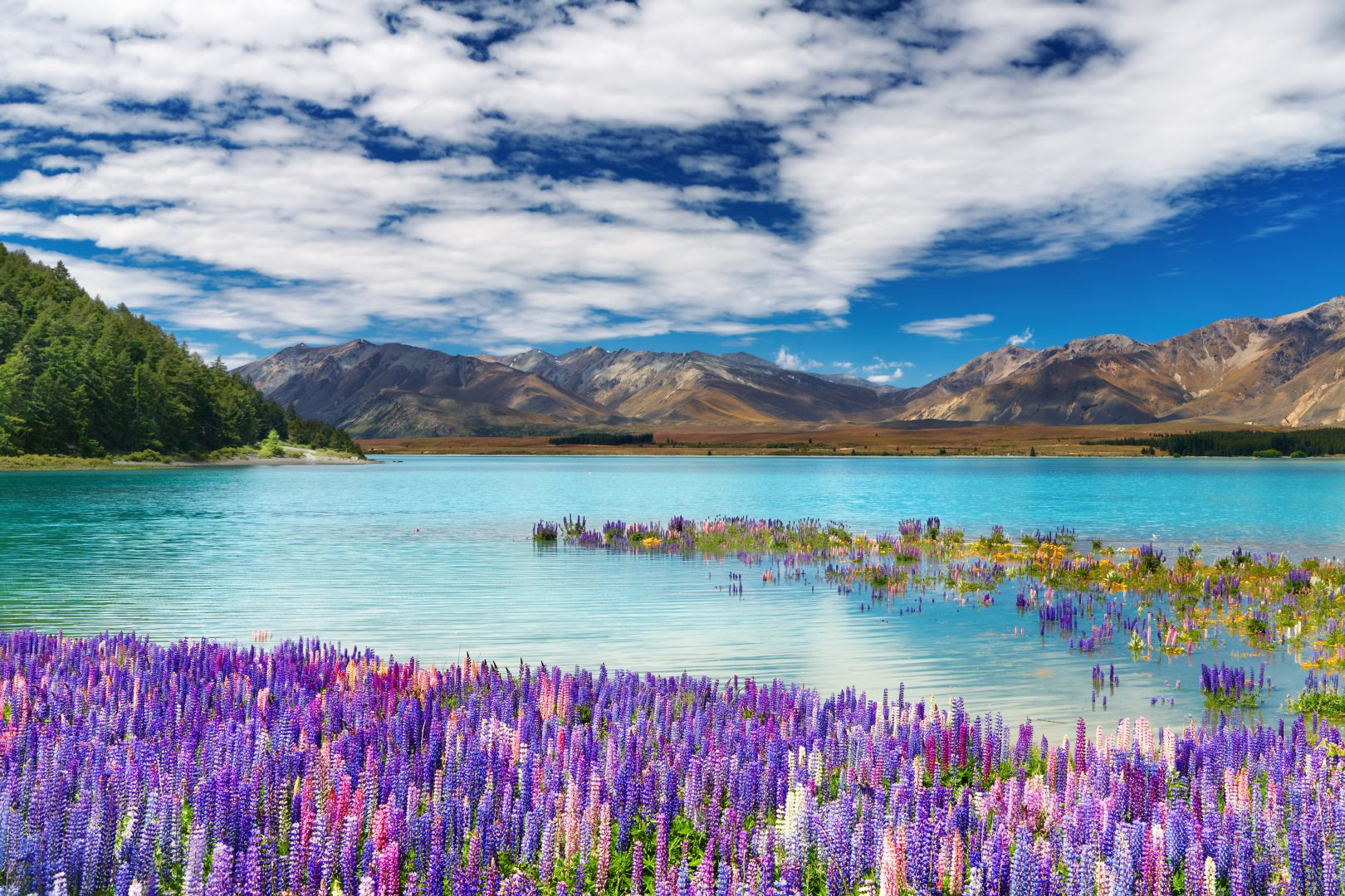 Could Team New Zealand Help Us Innovate In Education: Lake Tekapo, New Zealand