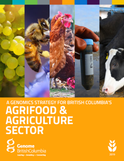 BC Agrifood Sector Strategy.PDF