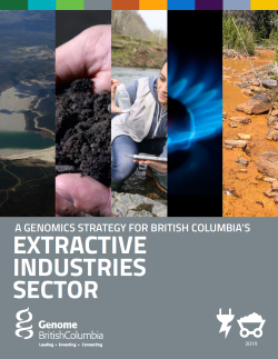 BC Extractive Industries Sector Strategy.PDF